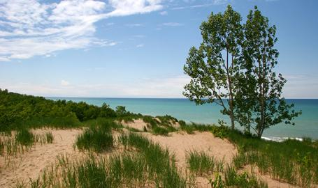 Mount Baldy at Indiana Dunes National Park