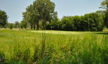 Wicker Memorial Park golf