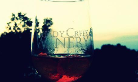 Shady Creek Winery Michigan City Things to Do Wine Glass