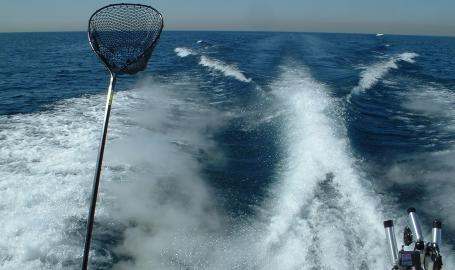 Running-In-North-Coast Charters