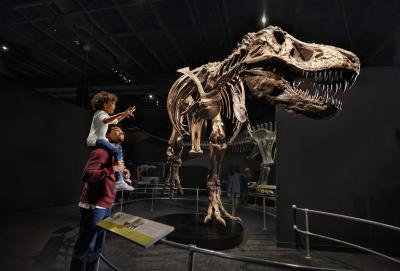 American Museum of Natural History Dinosaur Gallery at COSI