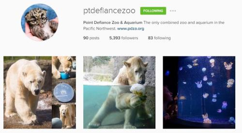Point Defiance Instagram