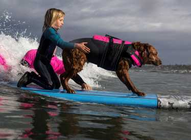 Superpower Dogs_surf