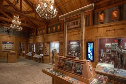 Special Exhibition Tours