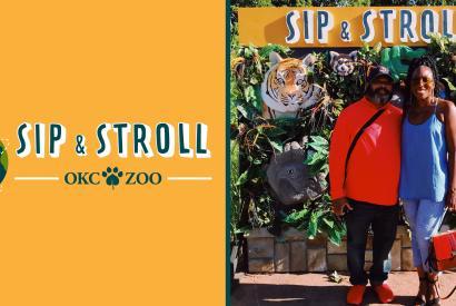 Sip & Stroll