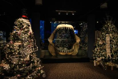 Festival of Trees at the NC Aquarium in Fort Fisher with shark jaws display