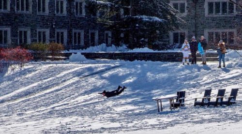 A child sleds down a small hill on the campus of Princeton University