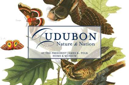 Audubon: Nature and Nation Exhibit