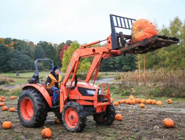 The Great Pumpkin Drop & Candy Corn Parade