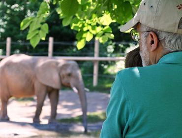 Senior Day at the Zoo
