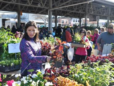 Flower City Days at the Market