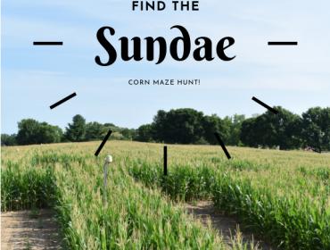 Find the Sundae!  Corn Maze Hunt!!