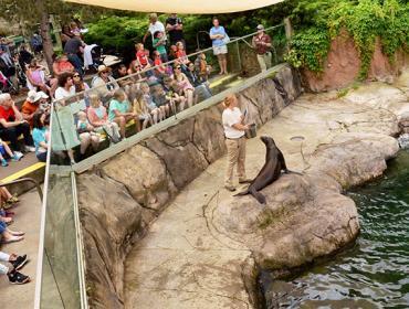Spring Break Programs at the Zoo