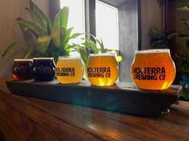 Flight of different colored beers on wooden counter at Noctera Brewing