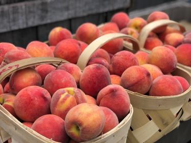 There's a Peach Party at Beasley's Orchard in Danville on Saturday! (Photo courtesy of Beasley's Orchard)