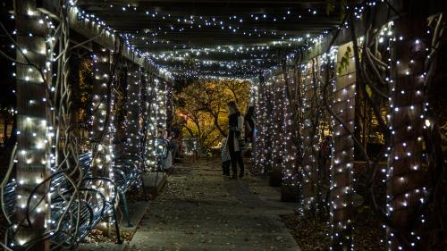 Outdoor light display for the annual Sparkle Sandy Springs event
