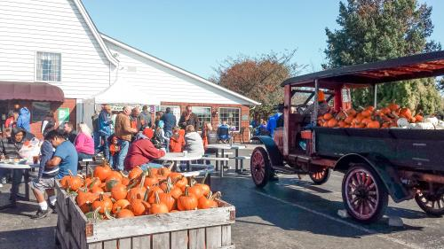 Pumpkins and fall event at Huber's Orchard