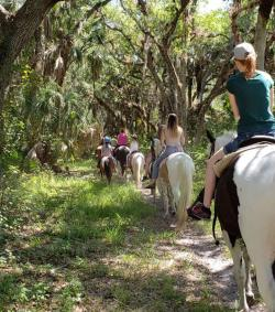 Horseback trail ride at Branded Heart Stables, Englewood Florida