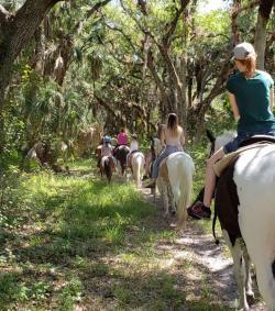 Horseback trail ride at Branded Heart Stables, Englewood Florida