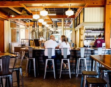 Taproot Brewing