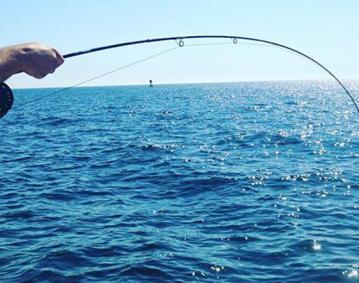 Patterson Fishing