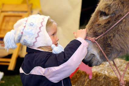 Purdue Spring Fest - child with donkey