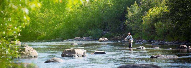 A fisherman casts a line into the river