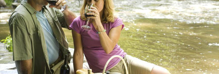 A couple enjoys a glass of wine at a picnic in Grimes Glen