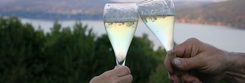 Two wine glasses cheer in front of the County Road 12 Scenic Overlook