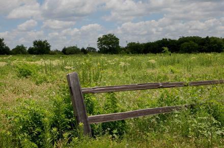 Blackland Prairie Park