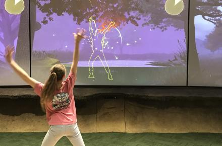 Discover Room Exhibit- Fireflies