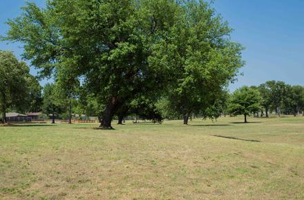 High Oak