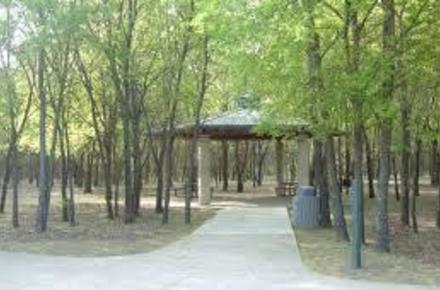 bob mcfarland park