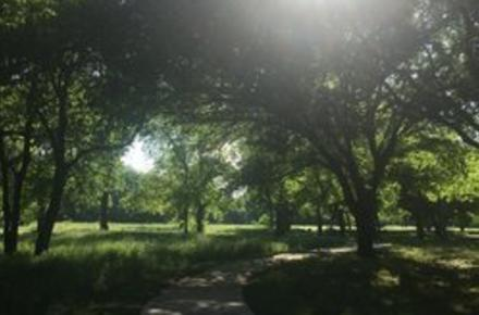 clarence foster park
