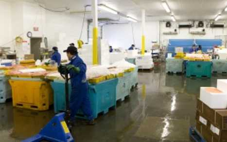 Blundell Seafoods Warehouse