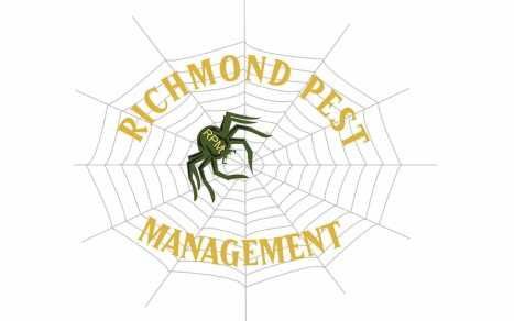 Richmond Pest Management