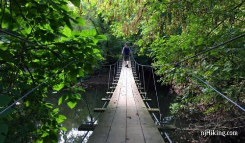 A hanging bridge with green trees surrounding it