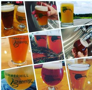 Summerhill Brewing Collection - OUR Cayuga