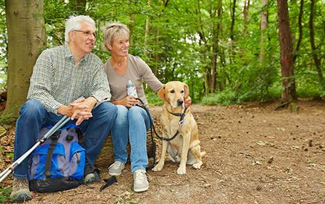 Gatlinburg-hiking-pet-friendly