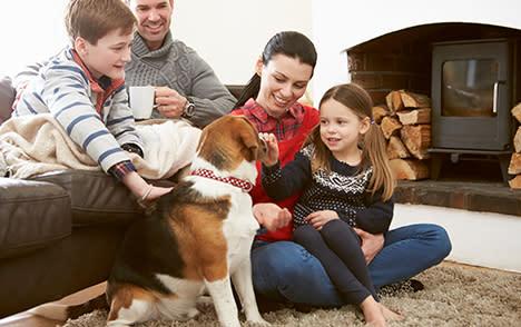 Gatlinburg-lodging-pet-friendly