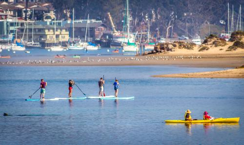 Kayak and Paddleboarders on the Bay