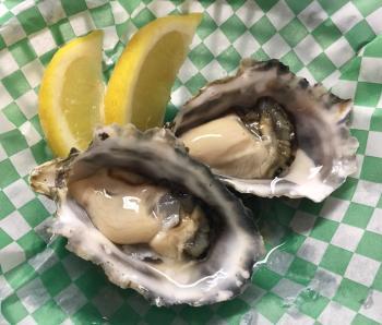 oyster3.jpg