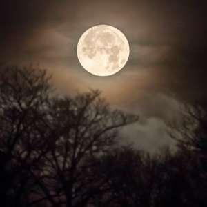 Sunset/Full Worm Moon Stroll