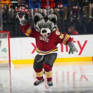 Meet the Mascots - Skates