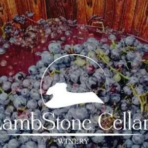 Harvest Celebration & Grape Stomp