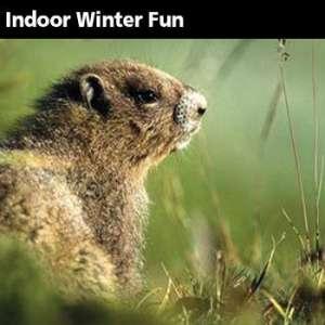 Cabin Fever Festival / Groundhog Day
