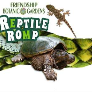 Reptile Romp