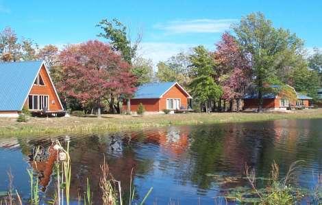 Serenity Springs