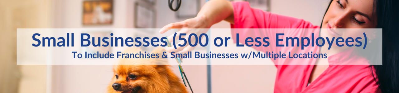 small businesses graphics