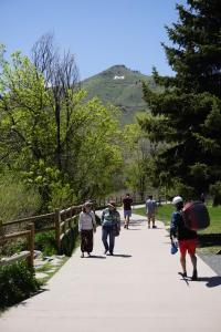 Clear Creek Path Spring